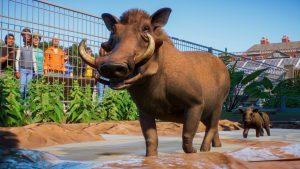 Planet Zoo Warthog